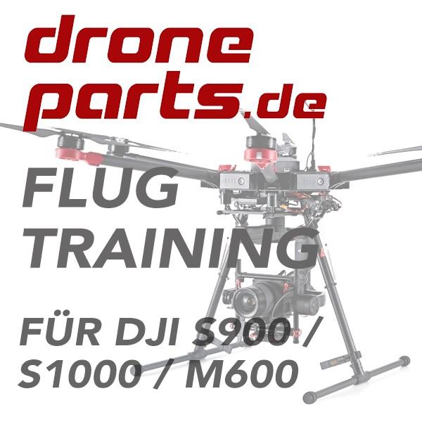 DJI S900   DJI S1000   DJI Matrice 600 Flugtraining (incl. Zertifikat)
