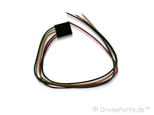 5 Pin Molex Stecker mit Kabel (für Fatshark)